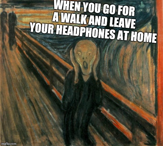 WHEN YOU GO FOR A WALK AND LEAVE YOUR HEADPHONES AT HOME | image tagged in scream | made w/ Imgflip meme maker