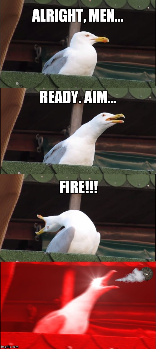 That Seagull is a Cannon! | ALRIGHT, MEN... READY. AIM... FIRE!!! | image tagged in memes,inhaling seagull,cannon,cannonball,seagull,soldier | made w/ Imgflip meme maker