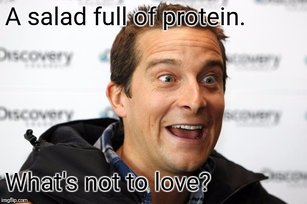 Bear Grylls Approved Food | A salad full of protein. What's not to love? | image tagged in bear grylls approved food | made w/ Imgflip meme maker