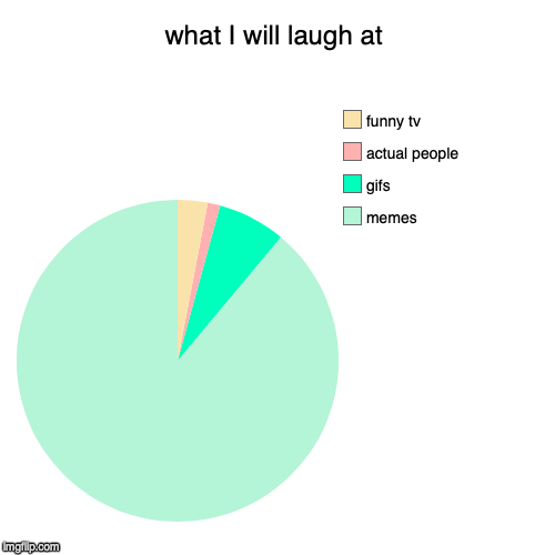 what I will laugh at | memes, gifs, actual people, funny tv | image tagged in funny,pie charts | made w/ Imgflip chart maker