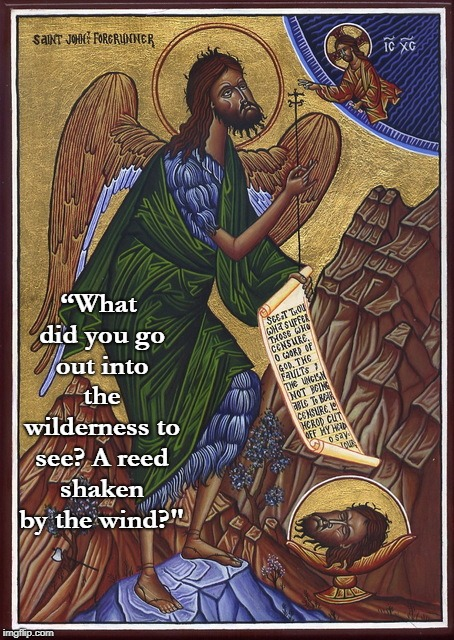 "John the Baptist | ""What did you go out into the wilderness to see? A reed shaken by the wind?"" 