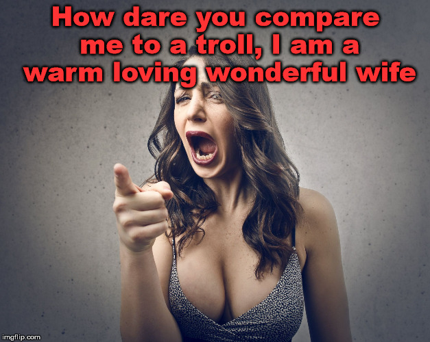 crazy girl | How dare you compare me to a troll, I am a warm loving wonderful wife | image tagged in crazy girl | made w/ Imgflip meme maker