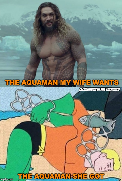 Wants Vs.Got |  THE AQUAMAN MY WIFE WANTS; FATHERHOOD IN THE TRENCHES; THE AQUAMAN SHE GOT | image tagged in jason momoa,aquaman,what she wants | made w/ Imgflip meme maker