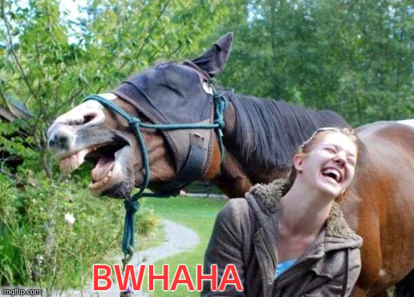 Laughing Horse | BWHAHA | image tagged in laughing horse | made w/ Imgflip meme maker