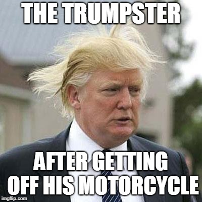 Donald Trump | THE TRUMPSTER AFTER GETTING OFF HIS MOTORCYCLE | image tagged in donald trump | made w/ Imgflip meme maker