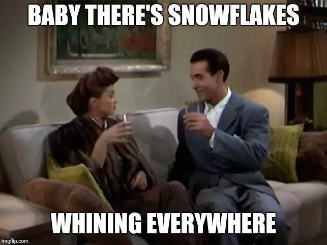 BABY THERE'S SNOWFLAKES WHINING EVERYWHERE | image tagged in baby its cold outside,snowflakes,liberals,feminism | made w/ Imgflip meme maker