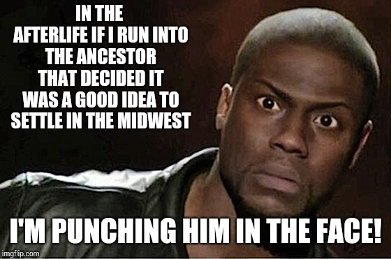 Freakin Weather |  IN THE AFTERLIFE IF I RUN INTO THE ANCESTOR THAT DECIDED IT WAS A GOOD IDEA TO SETTLE IN THE MIDWEST; I'M PUNCHING HIM IN THE FACE! | image tagged in memes,kevin hart,cold weather,weather,warm weather,springtime | made w/ Imgflip meme maker