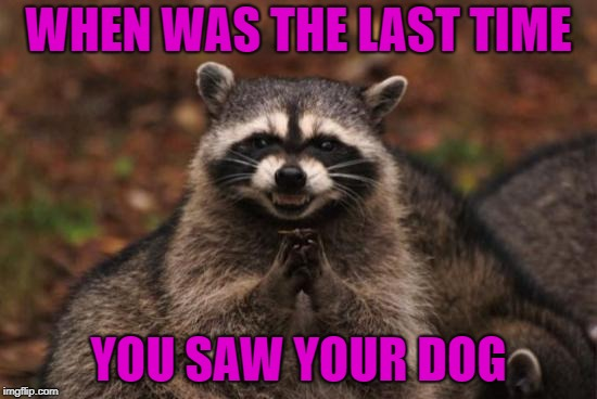 WHEN WAS THE LAST TIME YOU SAW YOUR DOG | made w/ Imgflip meme maker