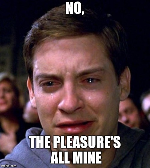 NO, THE PLEASURE'S ALL MINE | image tagged in crying peter parker | made w/ Imgflip meme maker