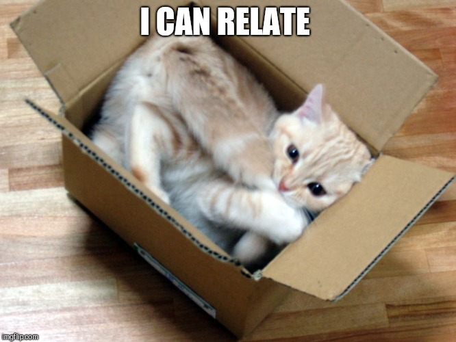 Cat in a Box | I CAN RELATE | image tagged in cat in a box | made w/ Imgflip meme maker