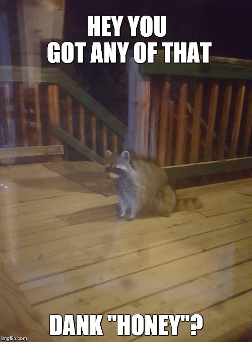 "HEY YOU GOT ANY OF THAT DANK ""HONEY""? 
