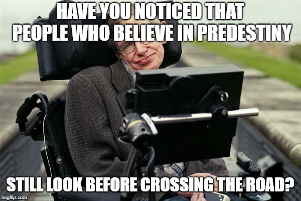 Hawkin | HAVE YOU NOTICED THAT PEOPLE WHO BELIEVE IN PREDESTINY STILL LOOK BEFORE CROSSING THE ROAD? | image tagged in hawkin | made w/ Imgflip meme maker
