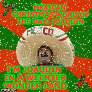 Fleece Navidad to all!!! | MEXICAN CHRISTMAS WORD OF THE DAY: JOAQUIN I'M JOAQUIN IN A WEENTER WONDER LAND | image tagged in mexican word of the day,memes | made w/ Imgflip meme maker