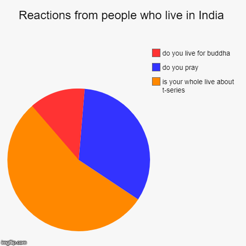 Reactions from people who live in India | is your whole live about t-series, do you pray, do you live for buddha | image tagged in funny,pie charts,t series,t-series,india | made w/ Imgflip chart maker