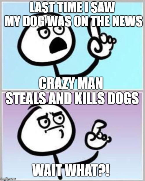 Wait what? | LAST TIME I SAW MY DOG WAS ON THE NEWS CRAZY MAN STEALS AND KILLS DOGS WAIT WHAT?! | image tagged in wait what | made w/ Imgflip meme maker