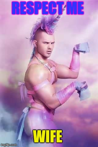 Gay Unicorn | RESPECT ME WIFE | image tagged in gay unicorn | made w/ Imgflip meme maker