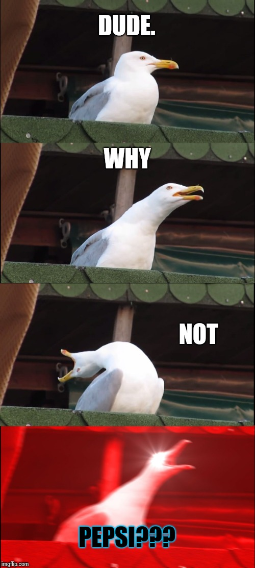 Inhaling Seagull Meme | DUDE. WHY NOT PEPSI??? | image tagged in memes,inhaling seagull | made w/ Imgflip meme maker