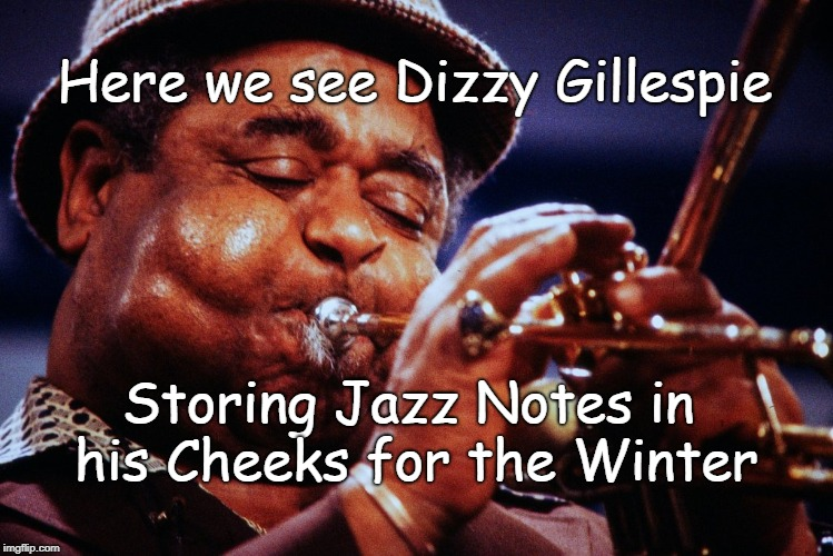 Jazz Chipmunk (Idea from Reader's Digest) | Here we see Dizzy Gillespie Storing Jazz Notes in his Cheeks for the Winter | image tagged in dizzy gillespe cheeks | made w/ Imgflip meme maker