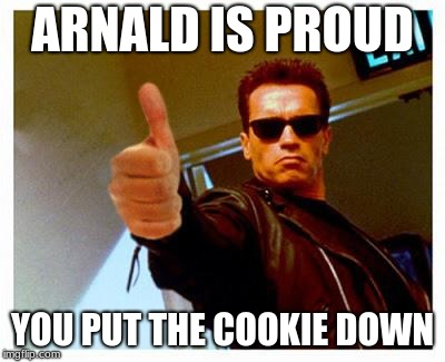 terminator thumbs up | ARNALD IS PROUD YOU PUT THE COOKIE DOWN | image tagged in terminator thumbs up | made w/ Imgflip meme maker