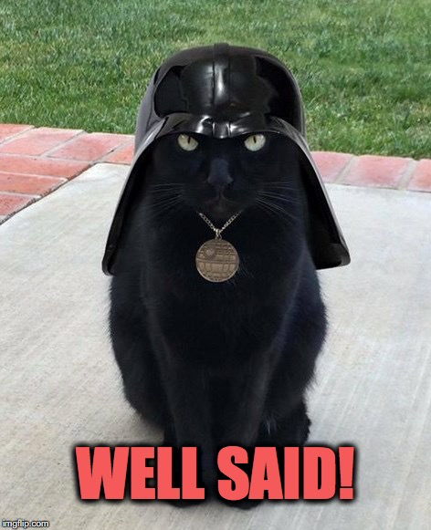 vadar kitty | WELL SAID! | image tagged in vadar kitty | made w/ Imgflip meme maker