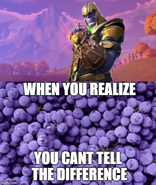 Thanos is a grape confirmed | WHEN YOU REALIZE YOU CANT TELL THE DIFFERENCE | image tagged in memes,gifs,joeysworldtour,fortnite,thanos,grapes | made w/ Imgflip meme maker