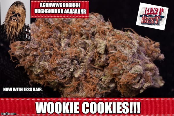 Get Your Box Today. |  AGUHWWGGGGHHH UUGHGHHHGH AAAAAHNR; NOW WITH LESS HAIR. WOOKIE COOKIES!!! | image tagged in wookies,star wars,cookies,chewbacca,best | made w/ Imgflip meme maker