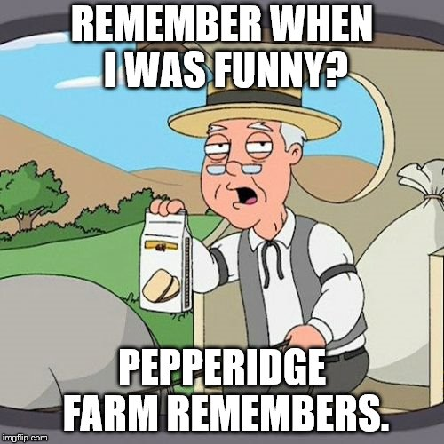 Pepperidge Farm Remembers | REMEMBER WHEN I WAS FUNNY? PEPPERIDGE FARM REMEMBERS. | image tagged in memes,pepperidge farm remembers | made w/ Imgflip meme maker