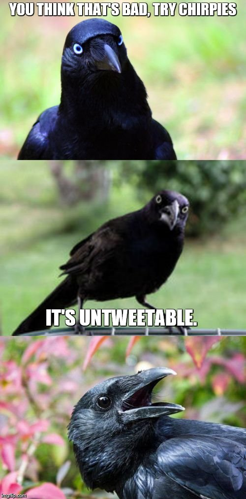 bad pun crow | YOU THINK THAT'S BAD, TRY CHIRPIES IT'S UNTWEETABLE. | image tagged in bad pun crow | made w/ Imgflip meme maker