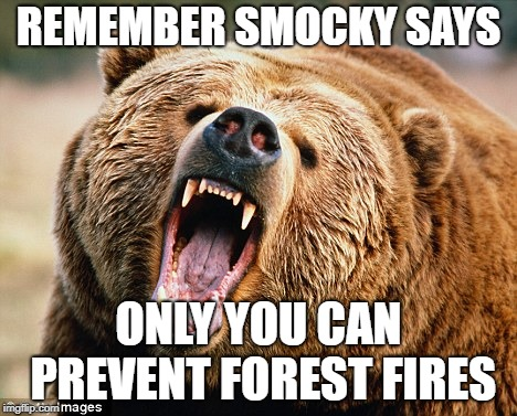REMEMBER SMOCKY SAYS ONLY YOU CAN PREVENT FOREST FIRES | image tagged in smocky,smock,donald trump,trump,donald trump is an idiot,trump is a moron | made w/ Imgflip meme maker