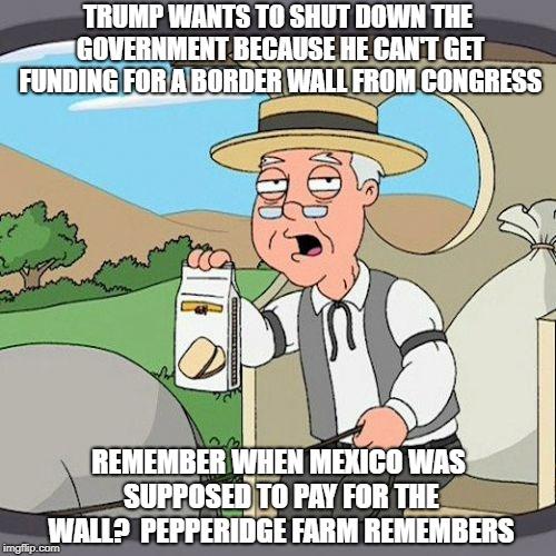 Pepperidge Farm Remembers | TRUMP WANTS TO SHUT DOWN THE GOVERNMENT BECAUSE HE CAN'T GET FUNDING FOR A BORDER WALL FROM CONGRESS REMEMBER WHEN MEXICO WAS SUPPOSED TO PA | image tagged in memes,pepperidge farm remembers | made w/ Imgflip meme maker