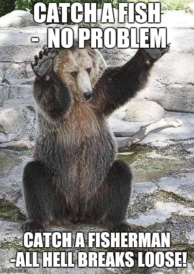 Catch a fish | CATCH A FISH -  NO PROBLEM CATCH A FISHERMAN -ALL HELL BREAKS LOOSE! | image tagged in funny bear | made w/ Imgflip meme maker