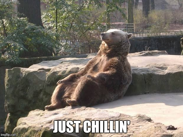 Just chillin' |  JUST CHILLIN' | image tagged in funny bear,just chillin' | made w/ Imgflip meme maker