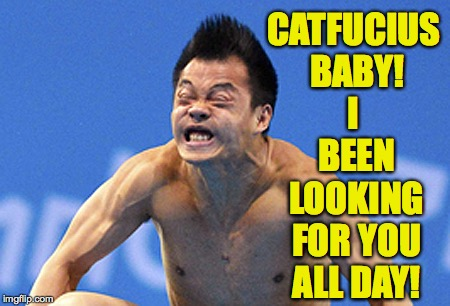 Chinese diver diving face Olympics constipation | CATFUCIUS BABY! I BEEN LOOKING FOR YOU ALL DAY! | image tagged in chinese diver diving face olympics constipation | made w/ Imgflip meme maker