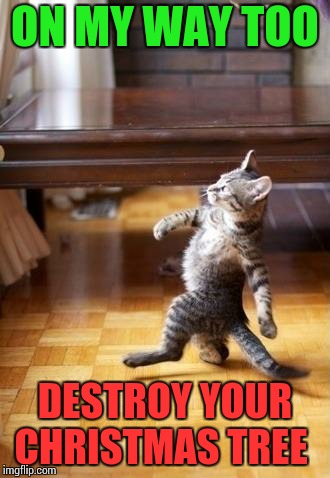 Christmas cat LOL!!!!!! | ON MY WAY TOO DESTROY YOUR CHRISTMAS TREE | image tagged in strolling cat,christmas tree,christmas,cat,christmas cats | made w/ Imgflip meme maker