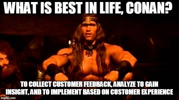 conan crush your enemies | WHAT IS BEST IN LIFE, CONAN? TO COLLECT CUSTOMER FEEDBACK, ANALYZE TO GAIN INSIGHT, AND TO IMPLEMENT BASED ON CUSTOMER EXPERIENCE | image tagged in conan crush your enemies | made w/ Imgflip meme maker