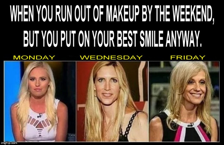 image tagged in makeup,smile,work,tomi lahren,kellyanne conway,ann coulter | made w/ Imgflip meme maker