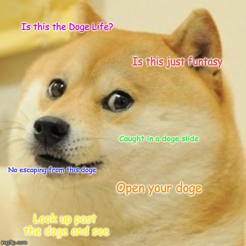 Doge | Is this the Doge Life? Is this just funtasy Caught in a doge slide No escaping from this doge Open your doge Look up past the doge and see | image tagged in memes,doge | made w/ Imgflip meme maker