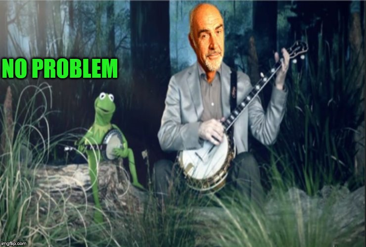 Kermit VS Sean Banjo War | NO PROBLEM | image tagged in kermit vs sean banjo war | made w/ Imgflip meme maker