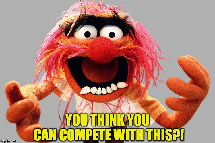 animal muppets | YOU THINK YOU CAN COMPETE WITH THIS?! | image tagged in animal muppets | made w/ Imgflip meme maker