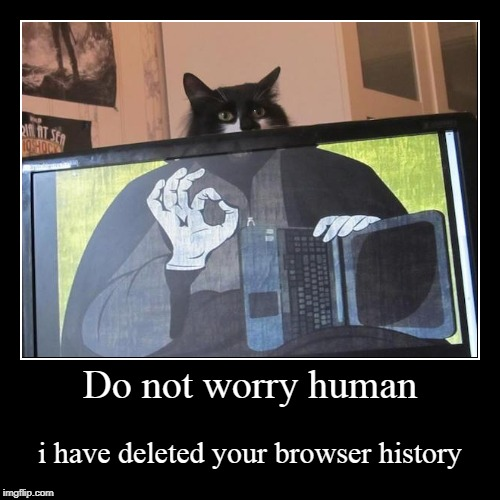 Do not worry human | i have deleted your browser history | image tagged in funny,demotivationals | made w/ Imgflip demotivational maker