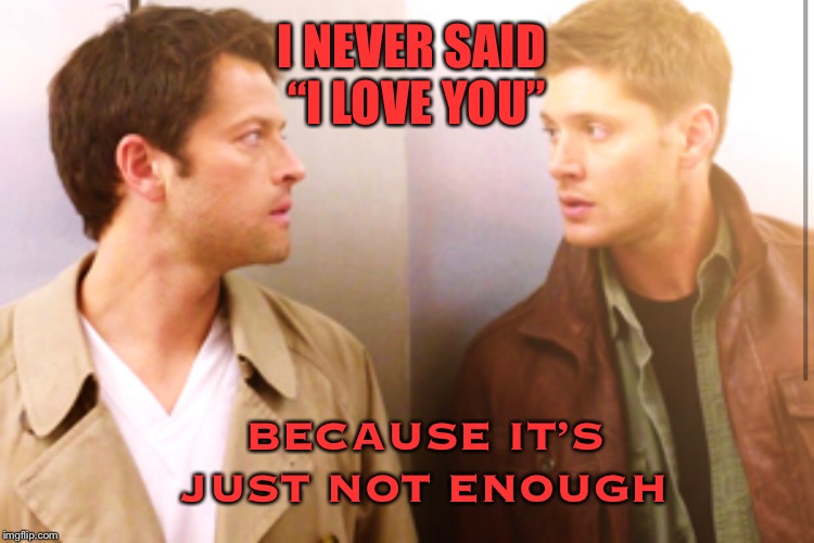 "Not enough |  I NEVER SAID ""I LOVE YOU""; BECAUSE IT'S JUST NOT ENOUGH 