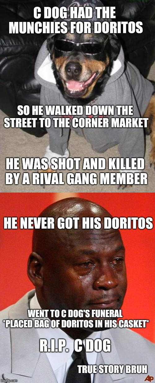R.I.P.  C Dog True Story  | C DOG HAD THE MUNCHIES FOR DORITOS TRUE STORY BRUH SO HE WALKED DOWN THE STREET TO THE CORNER MARKET HE WAS SHOT AND KILLED BY A RIVAL GANG  | image tagged in gangsta dog,crying jordan,doritos,true story | made w/ Imgflip meme maker