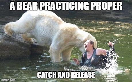 A BEAR PRACTICING PROPER CATCH AND RELEASE | made w/ Imgflip meme maker
