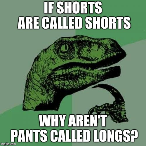 Philosoraptor Meme | IF SHORTS ARE CALLED SHORTS WHY AREN'T PANTS CALLED LONGS? | image tagged in memes,philosoraptor | made w/ Imgflip meme maker