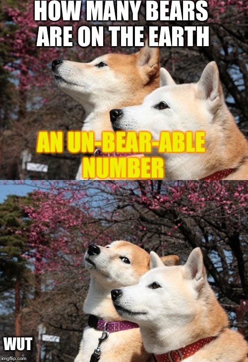 Bad pun dogs | HOW MANY BEARS ARE ON THE EARTH AN UN-BEAR-ABLE NUMBER WUT | image tagged in bad pun dogs | made w/ Imgflip meme maker