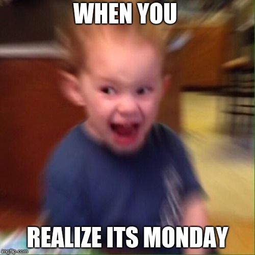 WHEN YOU REALIZE ITS MONDAY | image tagged in kid screaming | made w/ Imgflip meme maker
