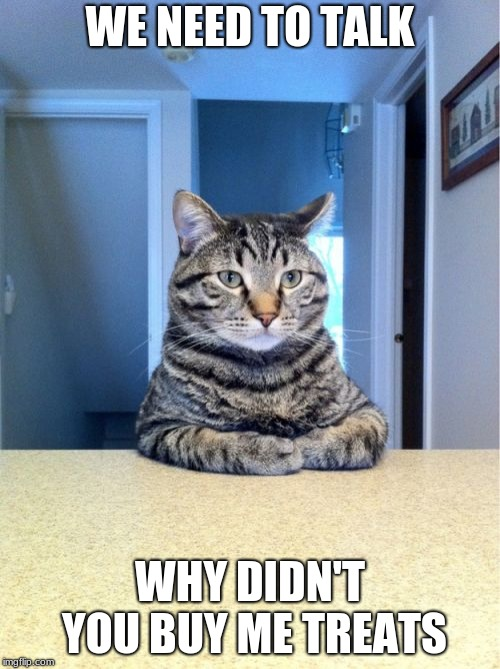 Take A Seat Cat | WE NEED TO TALK WHY DIDN'T YOU BUY ME TREATS | image tagged in memes,take a seat cat | made w/ Imgflip meme maker