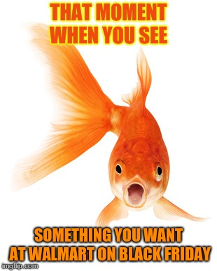 THAT MOMENT WHEN YOU SEE SOMETHING YOU WANT AT WALMART ON BLACK FRIDAY | image tagged in goldfish | made w/ Imgflip meme maker