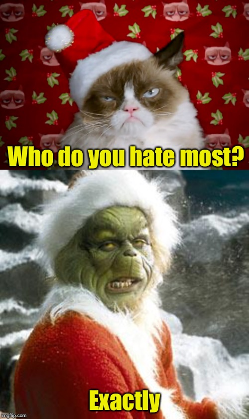 How The Grinch Stole Christmas Week Dec 9th - Dec 14th (A 44colt event) | Who do you hate most? Exactly | image tagged in grinch,grumpy cat xmas,how the grinch stole christmas week | made w/ Imgflip meme maker