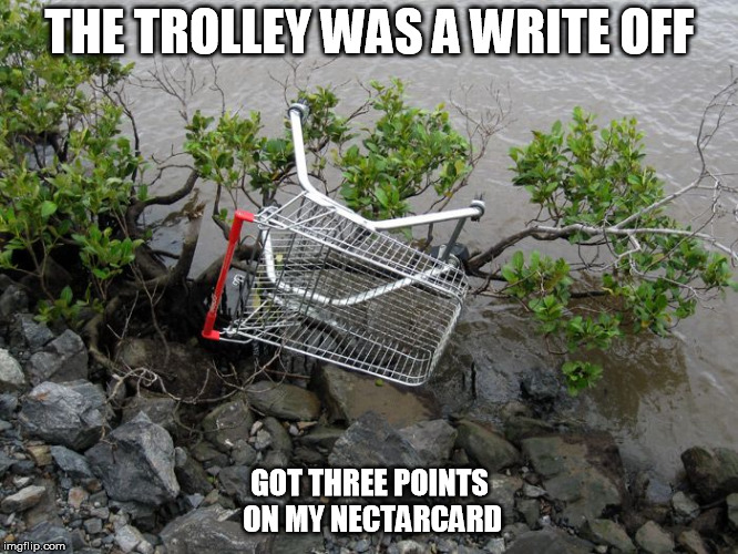 Nobody was hurt. | THE TROLLEY WAS A WRITE OFF GOT THREE POINTS ON MY NECTARCARD | image tagged in trolley,crash,joke,supermarket | made w/ Imgflip meme maker